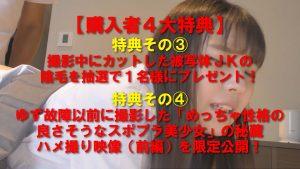 4大特典付き【電車痴漢】★圧倒的な透明感なのに日本人離れしたスライム爆乳美少女★痴漢後ホテルに連れ込み陰毛切り&生中2回戦!