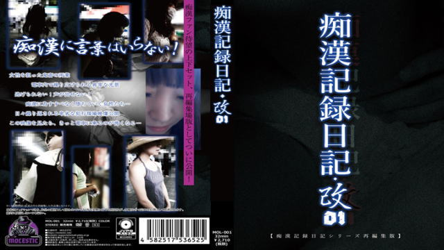痴漢記録日記・改01
