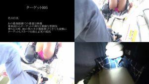 真・玄人痴漢 ファイル005(A級)
